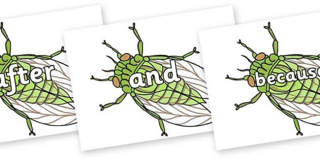 Connectives on Cicada - Connectives, VCOP, connective resources, connectives display words, connective displays