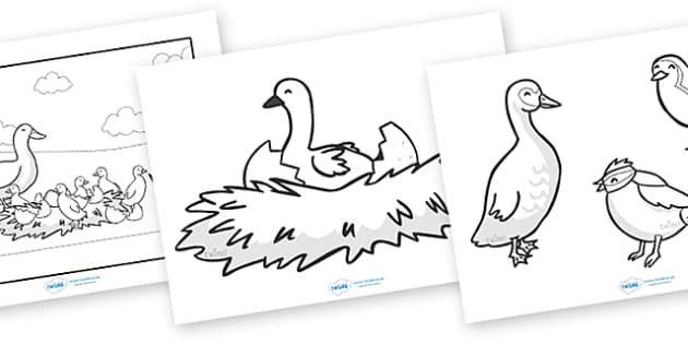The Ugly Duckling Story Colouring Sheets - The Ugly Duckling, Hans Christian Andersen, Andersen, fairy tale, colouring, fine motor skills, poster, worksheet, vines, A4, display, Danish, bird, barnyard, swan, beautiful, ugly, transformation, tale, sto