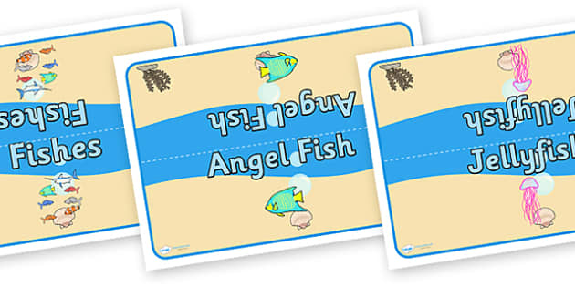 Editable Class Group Table Signs (Small Sea Life) - Seaside, Sea life, sea creatures,  group signs, group labels, group table signs, table sign, teaching groups, class group, class groups, table label