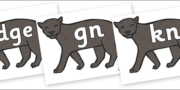 Silent Letters on Panthers - Silent Letters, silent letter, letter blend, consonant, consonants, digraph, trigraph, A-Z letters, literacy, alphabet, letters, alternative sounds