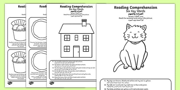 Reading Comprehension Six Key Words Activity Sheets Arabic Translation - Comprehension, information carrying words, key words, following instructions, worksheet