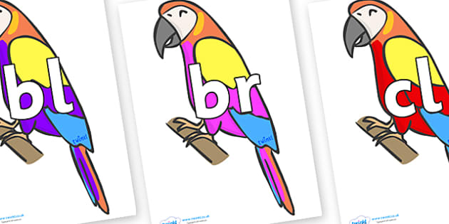 Initial Letter Blends on Macaws - Initial Letters, initial letter, letter blend, letter blends, consonant, consonants, digraph, trigraph, literacy, alphabet, letters, foundation stage literacy