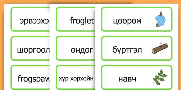 Life Cycle Word Cards - life cycles, lifecycle, visual aid, words - Mongolian
