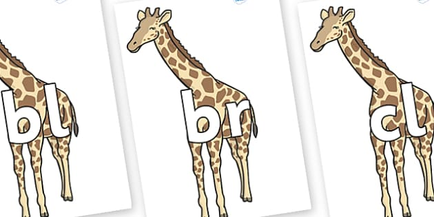 Initial Letter Blends on Giraffe - Initial Letters, initial letter, letter blend, letter blends, consonant, consonants, digraph, trigraph, literacy, alphabet, letters, foundation stage literacy