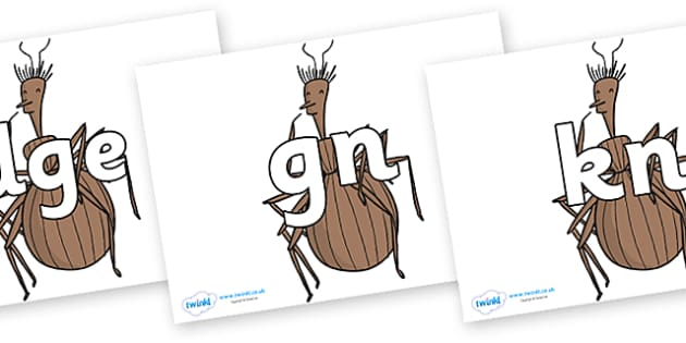 Silent Letters on Miss Spider to Support Teaching on James and the Giant Peach - Silent Letters, silent letter, letter blend, consonant, consonants, digraph, trigraph, A-Z letters, literacy, alphabet, letters, alternative sounds