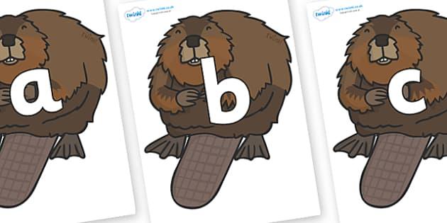 Phoneme Set on Beavers - Phoneme set, phonemes, phoneme, Letters and Sounds, DfES, display, Phase 1, Phase 2, Phase 3, Phase 5, Foundation, Literacy