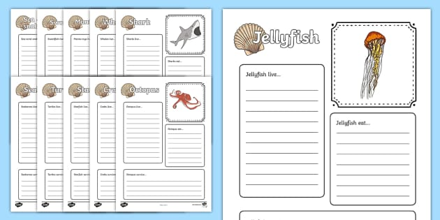 Sea Creatures Factfile Worksheets (Under the Sea) - sea, animal, fact file, facts