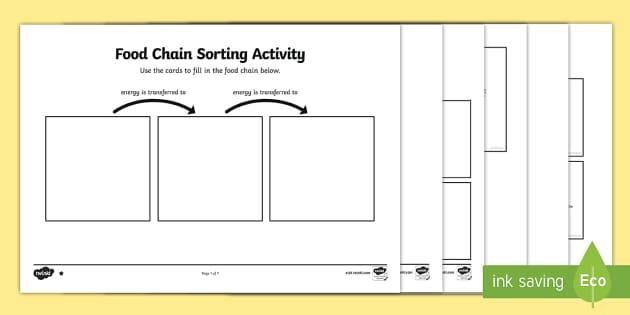 Food Chain Sorting Activity - food chain, sorting, activity, sort, food, chain