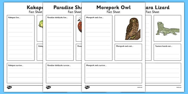 New Zealand Animals Fact File Activity Sheets, worksheet