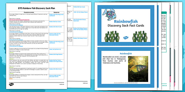 EYFS Discovery Sack Plan and Resource Pack to Support Teaching on Rainbow Fish - rainbow fish, discovery sack, sack