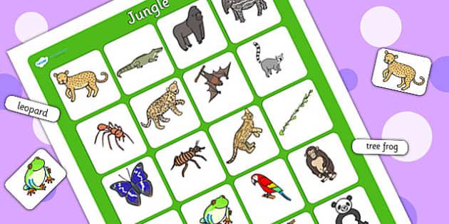 Jungle Vocabulary Poster - jungle, vocab poster, jungle display