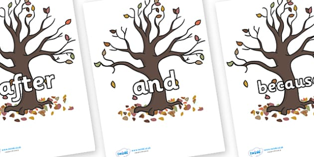 Connectives on Autumn Trees - Connectives, VCOP, connective resources, connectives display words, connective displays