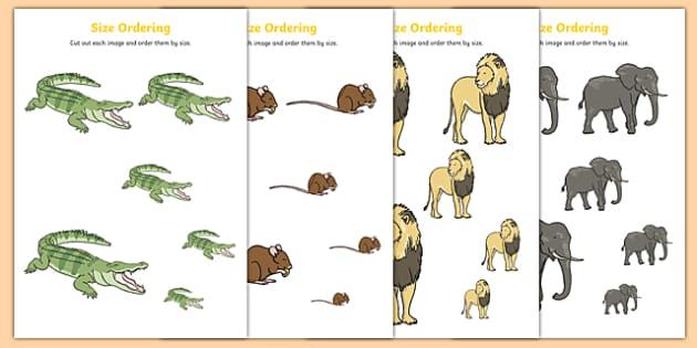 Crocodile Themed Size Ordering - The Selfish Crocodile, shape, maths, numeracy, eyfs, ks1,
