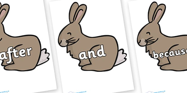 Connectives on Rabbit - Connectives, VCOP, connective resources, connectives display words, connective displays
