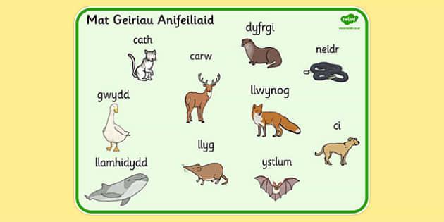 Mat Geiriau 'Anifeiliaid' - welsh, animals, word, mat, word mat