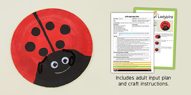 Paper Bowl Ladybird Craft EYFS Adult Input Plan and Resource Pack - minibeasts, EYFS lesson plan, activity,