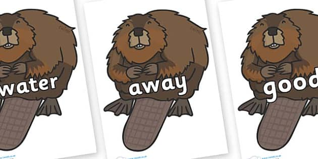 Next 200 Common Words on Beavers - Next 200 Common Words on  - DfES Letters and Sounds, Letters and Sounds, Letters and sounds words, Common words, 200 common words