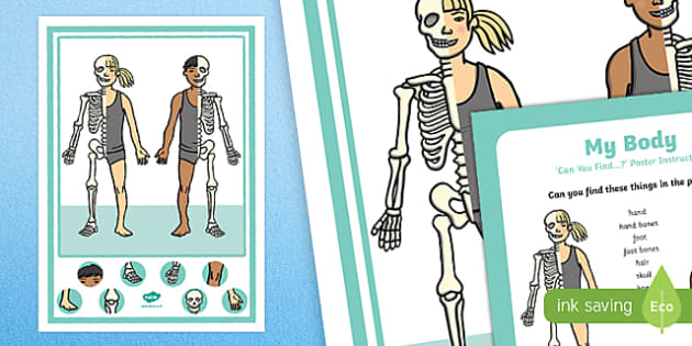 All About Me and Ourselves: My Body Can you Find...? Poster and Prompt Card Pack