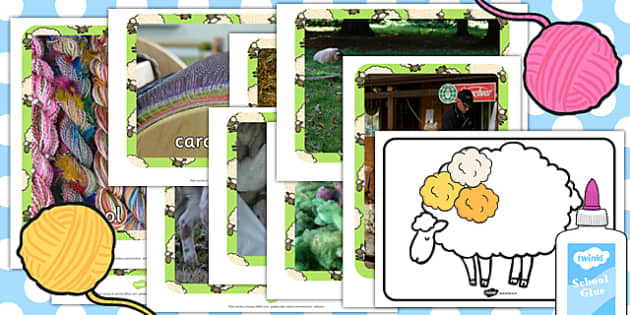 Woolly Sheep Activity - woolly sheep, activity, woolly, sheep