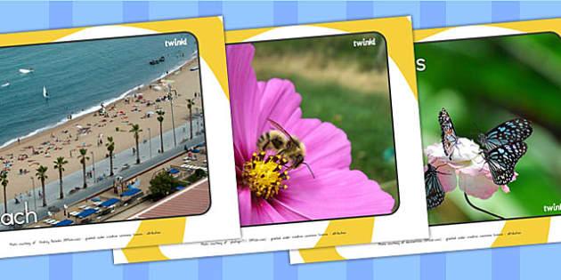 Summer Display Photos - summer, seasons, weather, photos, display