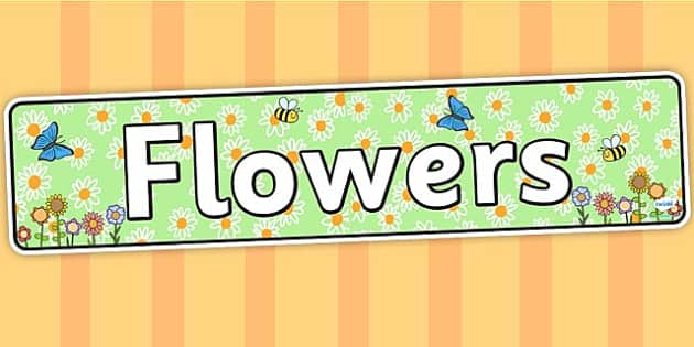 Flowers Display Banner - flower, flower banner, flower display