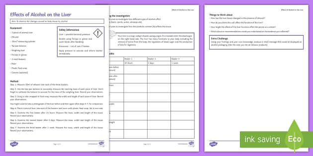 Effects of Alcohol on the Liver Investigation Instructions Sheet Print-Out - Investigation Help Sheet, science practical, method, instructions, liver, alcohol, effect of alcohol