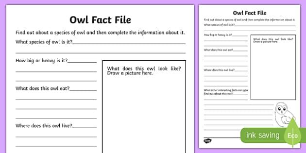 Owl Fact File Activity Sheet-Scottish, worksheet