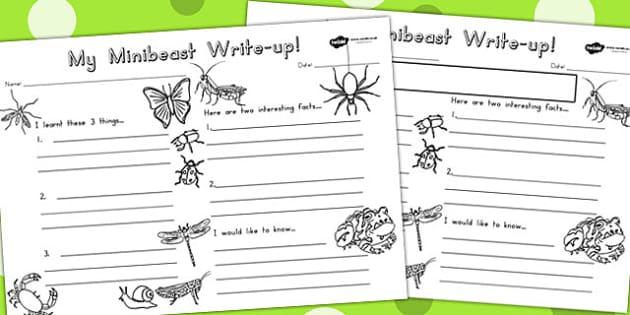 Minibeasts Write Up Worksheet - writing aid, writing template