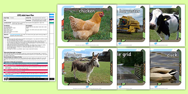 Farm Animal Describe it and Find it Adult Led Focus Resource Pack
