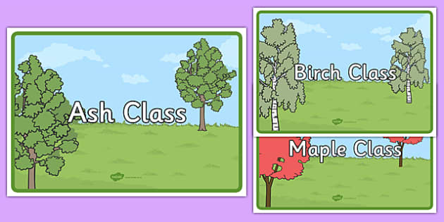 Tree Class A4 Posters - tree, class, a4, posters, tree class, display