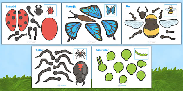 Minibeasts Split Pin Characters - split pin, pin, minibeasts, minibeast,  knowledge and understanding of the world, investigation, living things, snail, bee, caterpillar, ladybird, butterfly, making a split pin, moving, puppet, activity, creativity