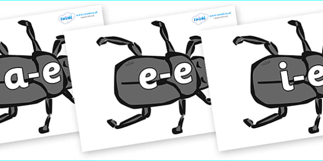 Modifying E Letters on Beetles - Modifying E, letters, modify, Phase 5, Phase five, alternative spellings for phonemes, DfES letters and Sounds