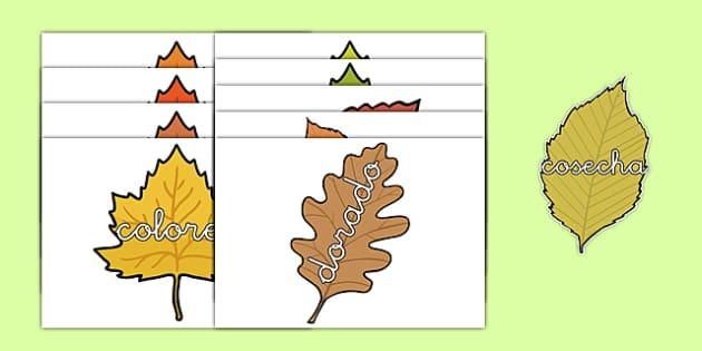 Palabras de otoño en hojas