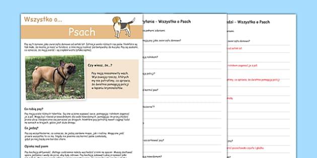 Rozumienie tekst pisanego Wszystko o psach po polsku