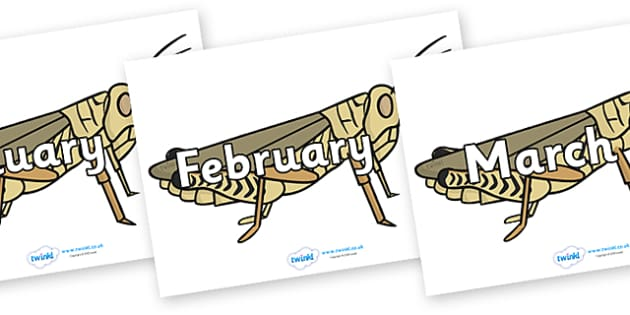 Months of the Year on Grasshoppers - Months of the Year, Months poster, Months display, display, poster, frieze, Months, month, January, February, March, April, May, June, July, August, September