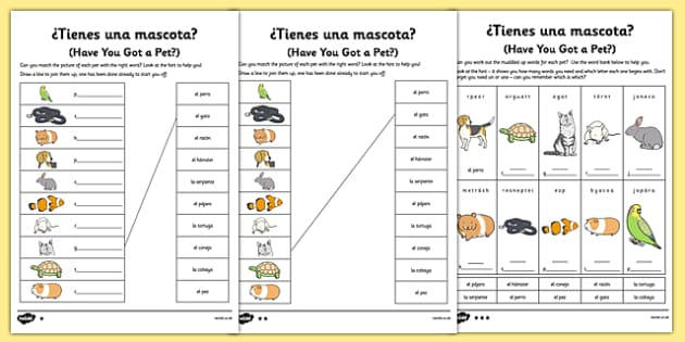 Spanish Tienes Mascotas Activity Sheet - spanish, pets, animals, worksheet