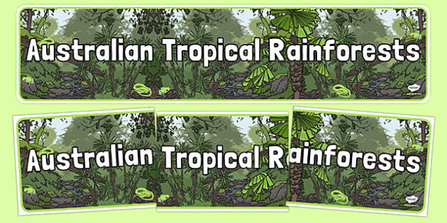 Australian Tropical Rainforests Display Banner - australia, Science, Habitats, Australian Curriculum, Living, Living Adventure, Environment, Living Things, Animals, Plants, Display Banner, Good to Grow, Ready Set Grow, Life on Earth, Tropical, Rainfo