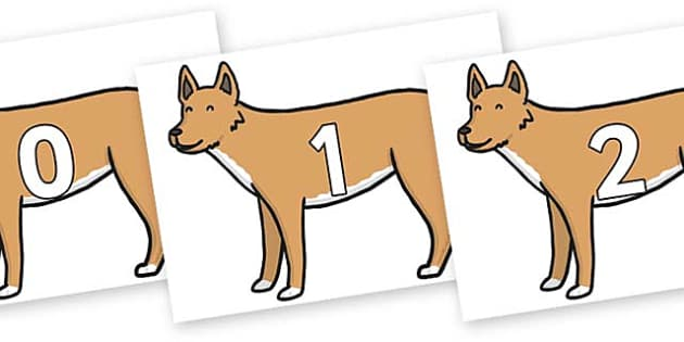 Numbers 0-31 on Dingo - 0-31, foundation stage numeracy, Number recognition, Number flashcards, counting, number frieze, Display numbers, number posters