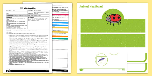 EYFS The Animal Ball Adult Input Plan and Resource Pack - EYFS, Eric Carle, The Bad-Tempered Ladybird, minibeasts, animals, physical development, adult led, p