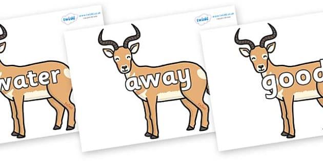Next 200 Common Words on Antelopes - Next 200 Common Words on  - DfES Letters and Sounds, Letters and Sounds, Letters and sounds words, Common words, 200 common words