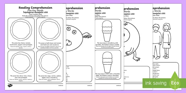 Reading Comprehension Five Key Word Activity Sheet Pack English/Romanian Translation