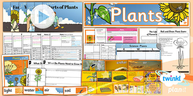 PlanIt - Science Year 3 - Plants Unit Pack - planit, plants, pack