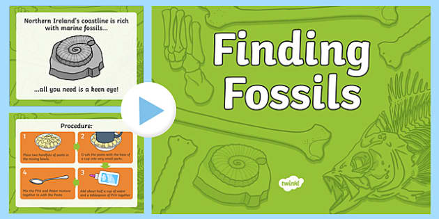 Finding Fossils PowerPoint