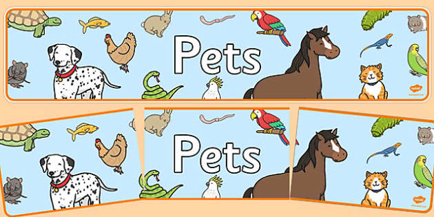 Editable Pets Banner - pets, animals, banner, display