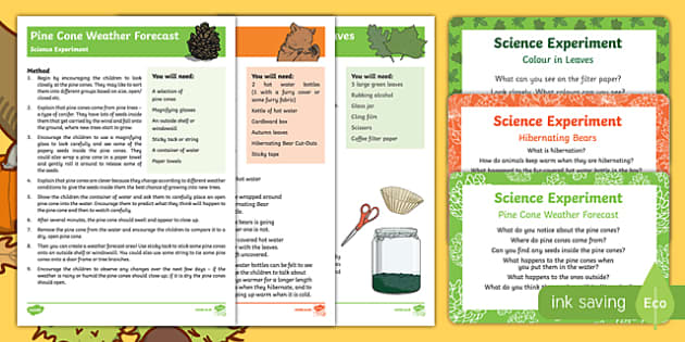 EYFS Autumn Themed Science Experiments Resource Pack-Australia