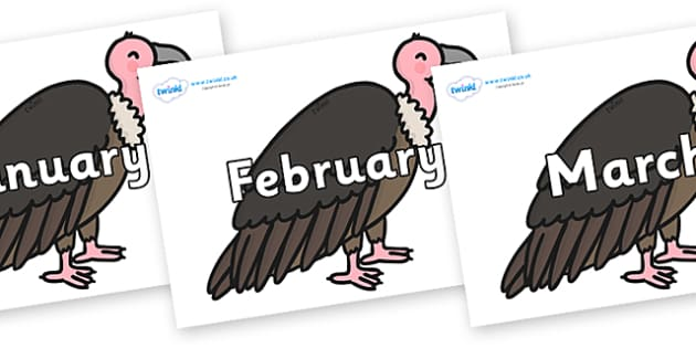 Months of the Year on Vultures - Months of the Year, Months poster, Months display, display, poster, frieze, Months, month, January, February, March, April, May, June, July, August, September