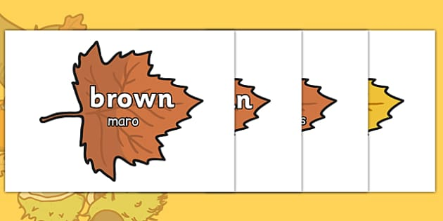 Autumn Words on Leaves Romanian Translation - romanian, autumn, words, leaves