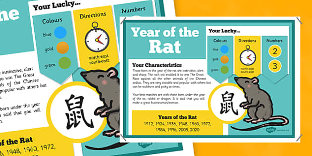 Chinese New Year of the Rat Display Poster - chinese new year, display poster, information, year of the rat