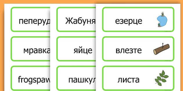 Life Cycle Word Cards - life cycles, lifecycle, visual aid, words - Bulgarian