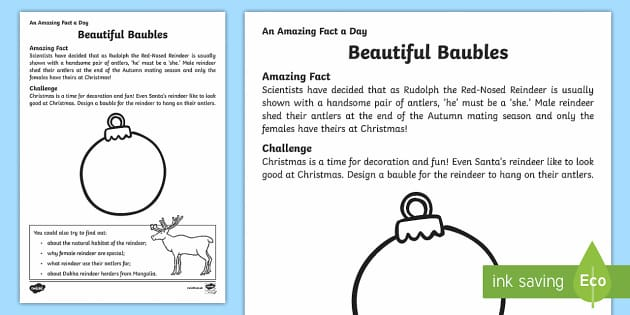 Beautiful Baubles Activity Sheet - Amazing Fact Of The Day, activity sheets, powerpoint, starter, morning activity, December, reindeer,